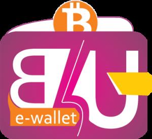 E-Wallet_logo-300x274